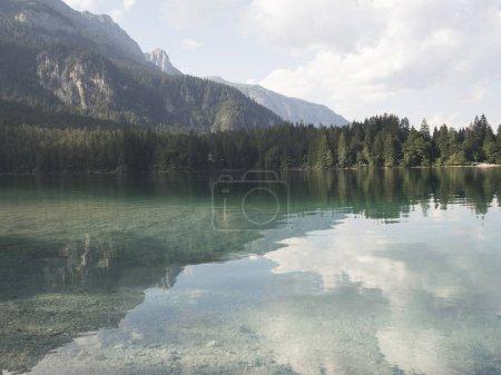 Photo pour 23 juillet 2017 Tovel alpin lac dans le parc naturel adamello Brenta, Trentin pays du Nord de l'Italie, - image libre de droit