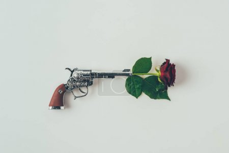 top view of red rose in gun barrel isolated on white, valentines day concept