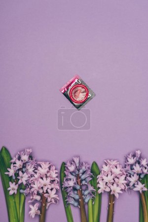 top view of condom and arranged flowers isolated on purple