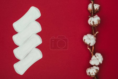 Photo for Top view of arranged menstrual pads and cotton twig isolated on red - Royalty Free Image
