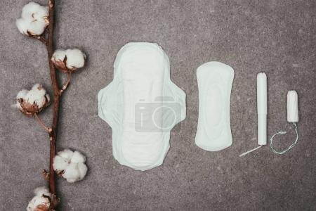 top view of arrangement of cotton twig, menstrual pads and tampons on grey surface