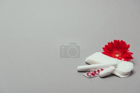 close up view of flower,pills, menstrual pads and tampons isolated on grey