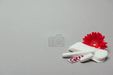 Photo pour Bouchent la vue de fleur, des pilules, des tampons menstruels et des tampons isolés sur fond gris - image libre de droit
