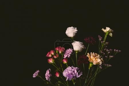 beautiful various tender blooming flowers isolated on black
