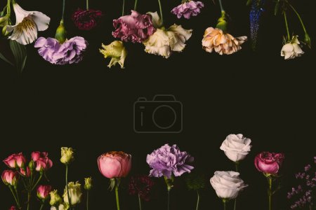 Photo for Collection of beautiful tender fresh blooming flowers isolated on black - Royalty Free Image