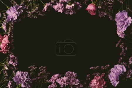 beautiful floral frame made of pink and purple blooming flowers isolated on black