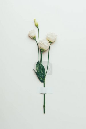 beautiful tender white eustoma flowers with green leaves on grey