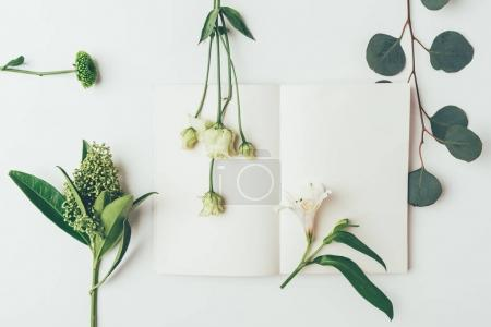 Photo for Top view of beautiful tender flowers and plants with blank card on grey - Royalty Free Image
