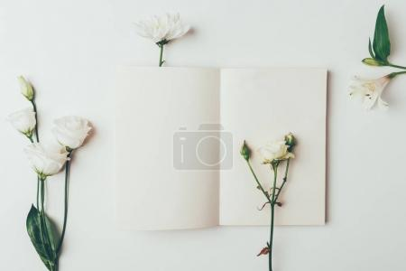 Photo for Top view of fresh tender white blooming flowers and blank card on grey - Royalty Free Image