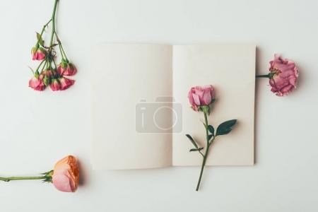 top view of beautiful tender pink flowers and blank card on grey