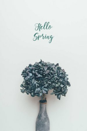 Photo for Blossoming decorative flowers in bottle and inscription hello spring on grey - Royalty Free Image