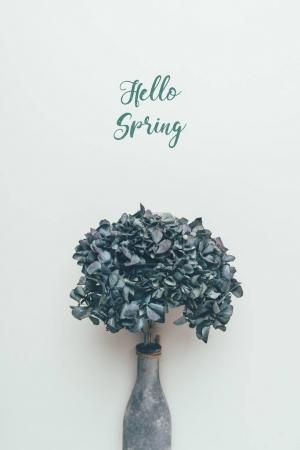 Photo pour Fleurs décoratives fleuries en bouteille et inscription bonjour printemps sur gris - image libre de droit