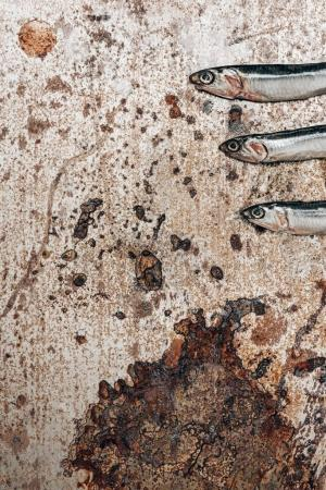 Cropped image of three little fish in row on rustic surface