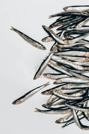 Top view of pile of fish isolated on white