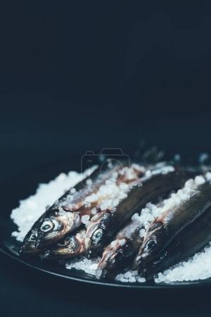 Pile of salted fish in frying pan isolated on black