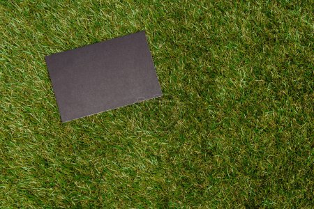 top view of empty blackboard on green grass, earth day concept