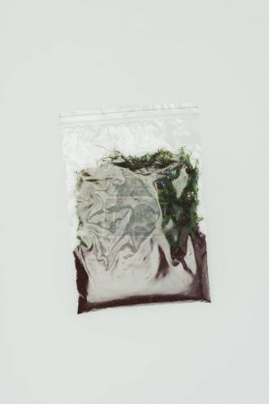 top view of ziplock plastic bag with dried plants and soil isolated on white, earth day concept