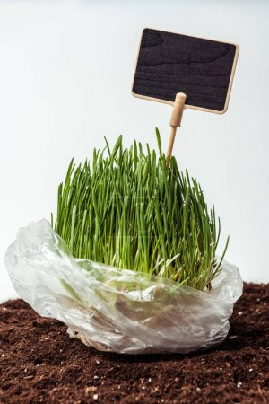 seedling with blackboard in plastic bag on soil isolated on white, earth day concept