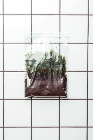 ziplock plastic bag with soil and plants hanging on tile wall, earth day concept