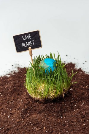 seedling with earth model and sign save planet on soil isolated on white, earth day concept
