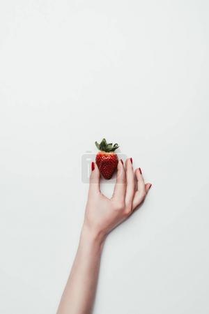 Photo for Female hand holding ripe strawberry isolated on white - Royalty Free Image
