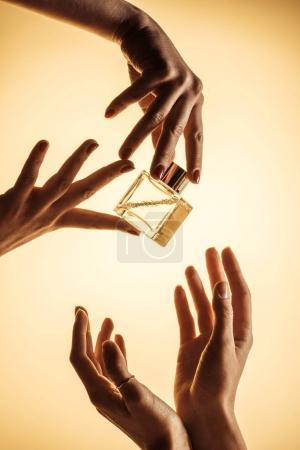 cropped view of women holding luxury bottle of perfume, isolated on yellow