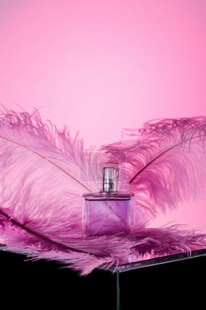one bottle of luxury perfume with feathers, on pink