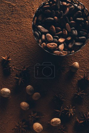 top view of delicious cocoa beans and star anise on cocoa powder
