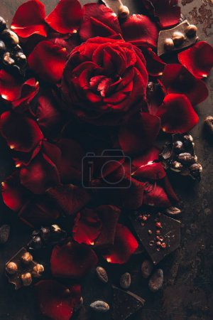 top view of beautiful red rose petals and gourmet chocolate with hazelnuts