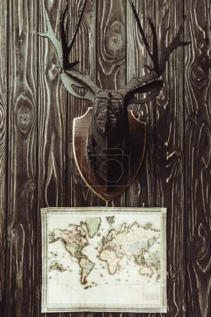 Photo for Close up view of map and decorative wooden deer head on dark wooden surface - Royalty Free Image
