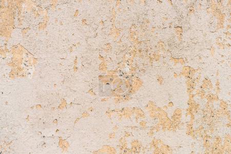 Craquage de vieux plâtre sur fond de mur