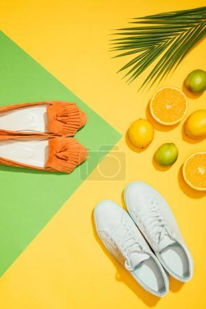 Photo for Top view of palm leaf, stylish female slippers shoes and sneakers, lemons, limes and slices of orange - Royalty Free Image
