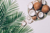 top view of gourmet organic coconuts and green palm leaves on white