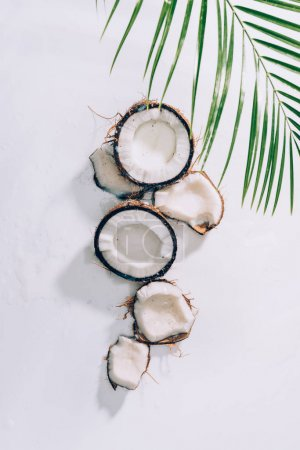 Photo for Top view of pieces of natural healthy coconut and green palm leaves on white - Royalty Free Image