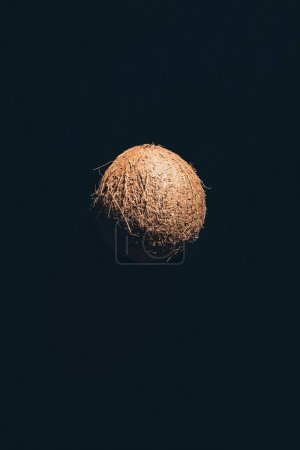 close-up view of single whole ripe coconut isolated on black