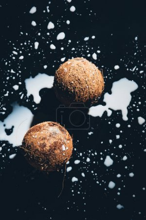 top view of organic coconuts and fresh healthy coconut milk on black