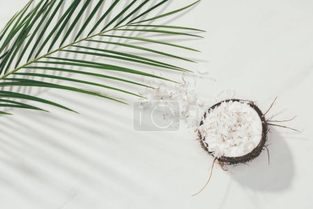 half of coconut with shavings and green palm leaves on white