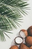 """Постер, картина, фотообои """"вид сверху свежих натуральных кокосы и зеленых пальмовых листьев на белом"""""""