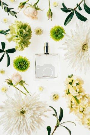 Photo pour Vue du dessus du flacon de parfum en verre entouré de fleurs et de branches vertes isolées sur blanc - image libre de droit