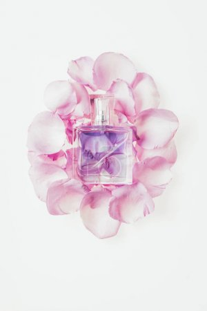 top view of bottle of perfume on pile of pink petals isolated on white