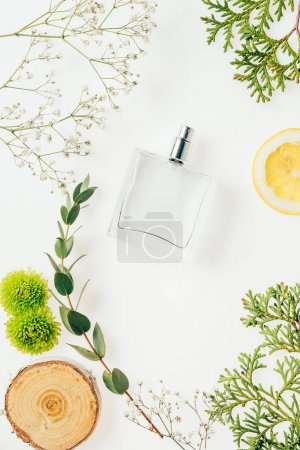 Photo for Top view of bottle of fresh perfume with floral composition around on white - Royalty Free Image