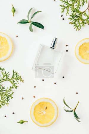 Photo for Top view of bottle of perfume with green branches and lemon slices on white - Royalty Free Image