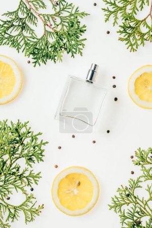 top view of bottle of fresh perfume with green branches and lemon slices on white surface