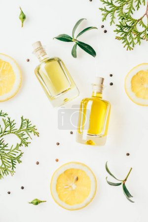top view of bottles of fresh perfume with green branches and lemon slices on white