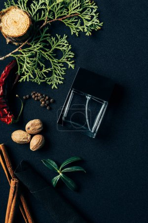 top view of bottle of perfume with aromatic spices and fir branch on black