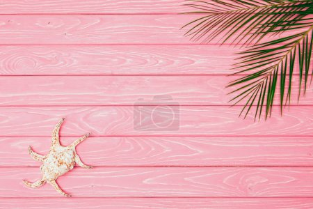 Photo for Top view of seashell with palm leaves on pink wooden surface - Royalty Free Image