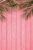 top view of palm leaves on pink wooden surface