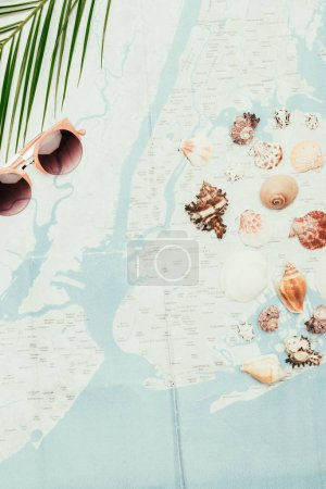 top view of seashells with sunglasses and palm leaves on travel map