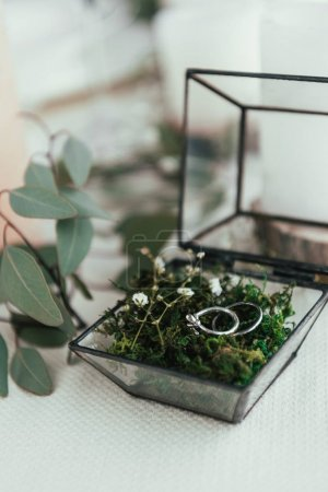 close up view of wedding rings in rustic box with plants inside