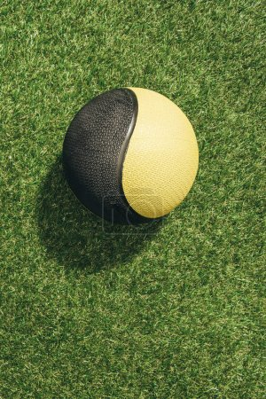 Top view of medicine ball on green grass